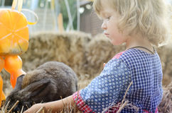 Cute white toddler girl in a rustic style dress caressing little grey rabbit Stock Photo