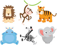 Cute Wild Animal Stock Photos