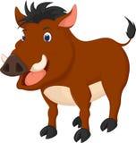 Cute wild boar cartoon. Illustration of cute wild boar cartoon Royalty Free Stock Photos