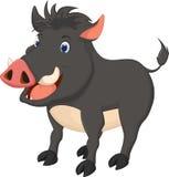 Cute wild boar cartoon. Illustration of cute wild boar cartoon Stock Photo
