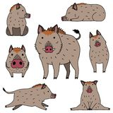 Cute wild boar doodle drawing set. For Asian new year card designs etc stock illustration
