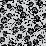 Cute wild flowers seamless pattern Royalty Free Stock Photography