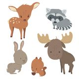 Cute wild forest animals set. Forest animals  set with isolated cartooning deer moose raccoon rabbit squirrel Stock Photo