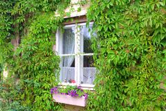CUTE WINDOW OF A COUNTRYHOUSE Stock Photography
