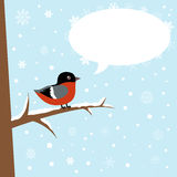 Cute winter bullfinch bird on a branch Royalty Free Stock Image