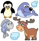 Cute winter illustration Stock Photography