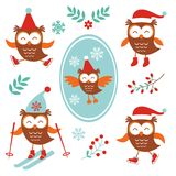 Cute winter owls Royalty Free Stock Photo