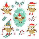 Cute winter owls colorful collection Royalty Free Stock Photography