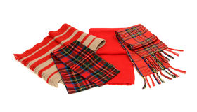 Cute Winter Tartan Scarves With Fringe. Stock Photography