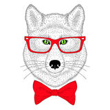 Cute wolf portrait, face with bow tie, glasses. Hand drawn anthr Stock Image
