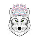 Cute wolf portrait with war bonnet on head. Hand drawn kitty fac Stock Image