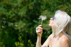 Cute woman with dandelions Royalty Free Stock Photography