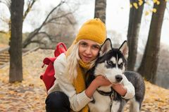 Cute woman and dog husky walking outdoor.  stock photo