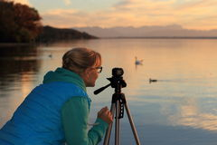Cute woman movie sunset with swans Stock Photo