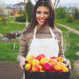 Cute woman standing with basket apples Stock Photos
