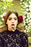 Cute woman with white flower on tongue in open mouth. Summer. Cute woman or pretty girl with white flower on tongue in open mouth with red lips, fashionable stock image