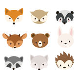 Cute woodland animals collection. Vector animals heads isolated on white background Stock Photography