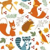 Cute woodland animals pattern Stock Photo