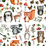 Cute woodland animals Watercolor images Kindergarten zoo icons Stock Photos