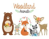 Woodland Forest Animals Vector Illustration. Cute woodland forest animals vector illustration including bear, bunny rabbit, fox, raccoon, and deer royalty free illustration
