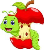 Cute worm cartoon. Funny cartoon worm in the apple Stock Images