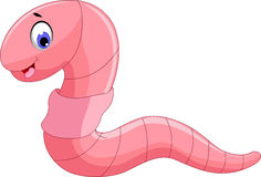 Cute worm cartoon for you design. Illustration of cute worm cartoon for you design Royalty Free Stock Photography