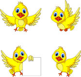 Cute yellow bird cartoon collection Stock Image