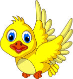 Cute Yellow bird cartoon flying Stock Photo