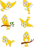 Cute Yellow bird cartoon set character royalty free illustration