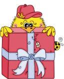 Cute yellow bird peeking up of big red gift royalty free illustration