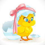 Cute yellow cartoon chicken Royalty Free Stock Photography