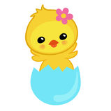Cute yellow chick hatched from an egg. Happy Easter. Vector illustration.  on white background Royalty Free Stock Photos
