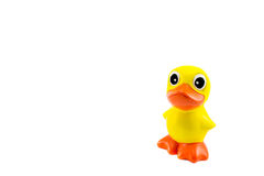 Cute yellow duck Stock Image