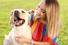 Cute yellow labrador retriever with owner. Outdoors royalty free stock images