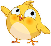 Cute Yellow Little Chick Royalty Free Stock Photos