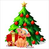 Cute Yellow Pig Ang Fir Tree On White Royalty Free Stock Image