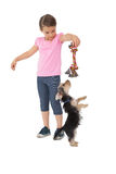 Cute yorkshire terrier puppy playing with little girl holding chew toy Royalty Free Stock Photography