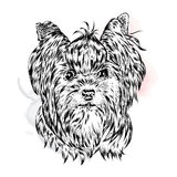 Cute Yorkshire terrier. Vector illustration for a card or poster. Print on clothes. Beautiful dog Royalty Free Stock Photo