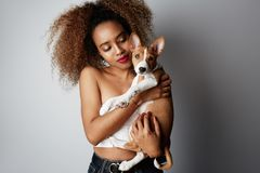 Cute young american african woman with curly hair hugging and kissing her puppy basenji dog. Love between dog and owner. Isolated on white background royalty free stock image
