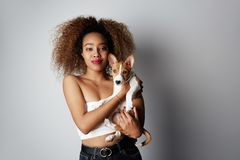 Cute young american african woman with curly hair hugging and kissing her puppy basenji dog. Love between dog and owner. Isolated on white background stock photo