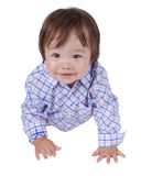 Cute young baby boy Royalty Free Stock Photo