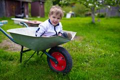 Cute young baby boy inside wheelbarrow in garden Stock Photography