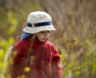 Cute young boy Stock Images