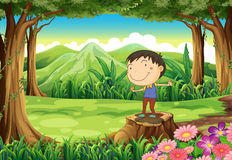 A cute young boy above the stump at the jungle Royalty Free Stock Images