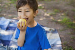 Cute young boy eating a fruit in park Stock Image