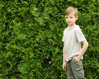 Cute young boy in the park is having fun green grass - summer time Royalty Free Stock Image