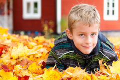 Cute young boy playing in autumn leaves Royalty Free Stock Photo