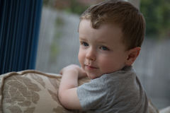 Cute young boy stock photography