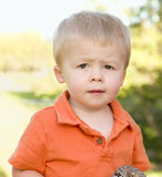 Cute Young Boy Portrait in The Park Royalty Free Stock Image