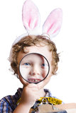 Boy on Easter hunt Stock Photo